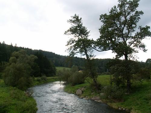 Rzeka Bóbr w Trzcińsku