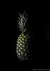 (Alberto Giambruno) Tags: stilllife verde nature fruit canon 50mm still focus mare flash ananas frutta esotic esotico