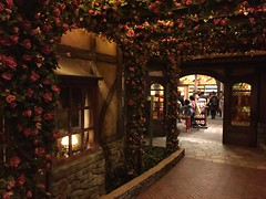 Tokyo Disneyland (jericl cat) Tags: park rose japan garden japanese tokyo disneyland interior disney honey pooh theme hunt 2015 winniethepoohs