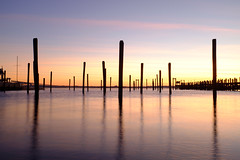 | | | | | | | | (BrianEden) Tags: morning travel november sky color water silhouette sunrise harbor us downtown fuji unitedstates rhodeisland newport fujifilm pylons jamestown ferrylanding x100s