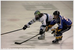 DESTIL Trappers Tilburg vs Ice Fighters Leipzig, 3 January 2016 (Dit is Suzanne) Tags: netherlands beard nederland icehockey 95 tilburg forward 41 eishockey baard strmer ijshockey views100 img3578    zuidbrabant canoneos40d oberliganord tilburgtrappers  destiltrappers icefighters  bradsnetsinger eishockeyoberliga  icefightersleipzig sigma18250mm13563hsm bradleysnetsinger destiltrapperstilburg dannystempher ditissuzanne  seizoen20152016 saison20152016 season20152016 20152016  03012016 southbrabant