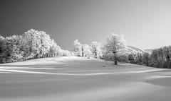 winter scape () Tags: winter snow mountains landscape frost powder bulgaria beech staraplanina centralbalkannationalpark buzovdial