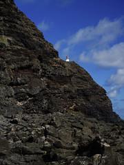 On The Ledge_DSC7164 (Wes Suzawa's iLand Photos) Tags: island hawaii hiking makapuu voigtlanderultron35mmf17