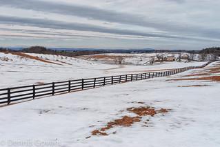 Winter Pastoral Scene