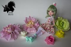 Spring Lady - ooak (skiurid_b) Tags: monster lady spring high doll vampire ooak cam custom repaint createamonster