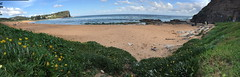 Avalon beach panorama (NinianLif) Tags: pittwatercouncil iphone6 panorama northernbeaches avalonbeach
