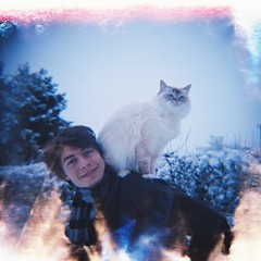 Sissi on Top (The witch of the west) Tags: pet snow cat lomography diana dianaf birman