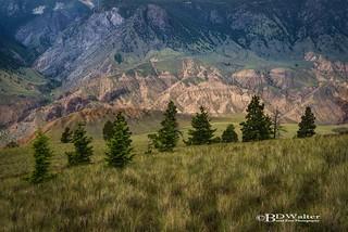 _BW21419-Big Bar Grasslands