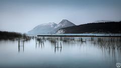 La pouponnire (cedric.chiodini) Tags: longexposure lake annecy water montagne landscape eau lac le paysage roseaux roseau poselongue saintjorioz canon5dmkiii