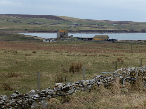 Houses in Caithness by the North Sea