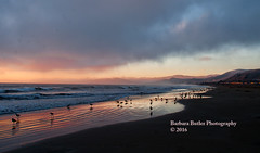 Life's a Beach (RedHatGal: Barbara Butler/FireCreek Photography) Tags: ocean california sunset summer beach birds clouds reflections sand surf waves dusk outdoorlandscape hills coastline centralcoast settingsun beautifulsky richcolors redhatgal firecreekphotography barbarabutlerphotography