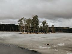norge (hopefish) Tags: sunset house lake tree rain oslo norway canon norge opera rainy 28 24mm efs lookslikefilm 700d