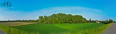 Castelvetro Piacentino (federicamarino42) Tags: park trees sky italy panorama streets green forest nikon flickr raw 1855mm castelvetro piacentino nikond5500