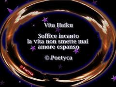 Vita Haiku (Poetyca) Tags: haiku image featured sfumature poetiche