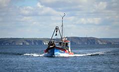Bringing In The Catch (R~P~M) Tags: uk greatbritain sea england coast boat fishing marine cornwall unitedkingdom vessel maritime mevagissey kernow