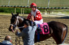 "2016-01-03 (25) r2 Charles Lopez on #8 Eight Da Hardway (JLeeFleenor) Tags: photos photography md laurelpark marylandhorseracing winter jockey جُوكِي ""赛马骑师"" jinete ""競馬騎手"" dżokej jocheu คนขี่ม้าแข่ง jóquei žokej kilparatsastaja rennreiter fantino ""경마 기수"" жокей jokey người horses thoroughbreds equine equestrian cheval cavalo cavallo cavall caballo pferd paard perd hevonen hest hestur cal kon konj beygir capall ceffyl cuddy yarraman faras alogo soos kuda uma pfeerd koin حصان кон 马 häst άλογο סוס घोड़ा 馬 koń лошадь winner maryland"