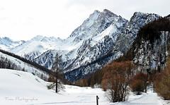 Le Mont Viso (Tinou61) Tags: mountain montagne hiver paca neige paysage queyras randonne hautesalpes montviso lechalp
