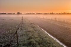 Ochtendflarden (Pieter ( PPoot )) Tags: sunrise lucht oranje vorst zonsopkomst groundfog ochtendflarden