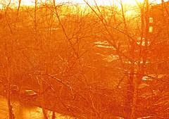 Rain & sun (AzIbiss) Tags: auto city roof sunset sky urban orange sun reflection tree texture car rain yellow glitter backlight canon poplar mood branch pattern shine traffic bright russia outdoor flash sunny calm siberia gloss serene sunlit amateur tomsk counterlight populus canondigital canonphotography scintillation hyperzoom westernsiberia branchlet contexture sx50 canonsx50