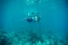 Hanauma Bay (Dominick Nicholas Valdivia) Tags: school fish hawaii bay paradise underwater oahu sony lifestyle hanaumabay hanauma snokel meikon dominicknicholas luckywelivehawaii sonya6000 dominicknicholascom hilie