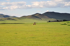 Mongolian herder (charlottehbest) Tags: travel horse mountains travelling beautiful scenery driving cattle offroad exploring roadtrip adventure riding mongolia local herding 2015 offthebeatentrack charlottehbest theadventuresofhenryjruffington