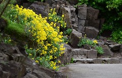 (careth@2012) Tags: landscape spring scene