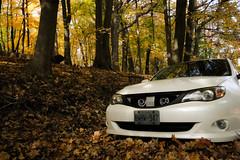 Subaru Impreza (RGen Photography) Tags: fall outdoor subaru leafs rule thirds