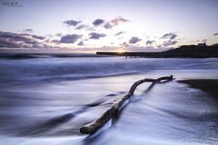 log in (Alex365pix) Tags: sea water clouds sunrise coast log waves seascapes northumberland northeastcoast seatonsluice cokinz nikond610