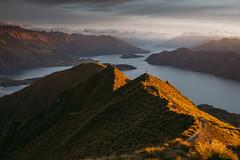 Roys Peak (STEFFEN EGLY) Tags: newzealand sunrise outdoors outdoor hiking explore nz wanaka goldenlight royspeak