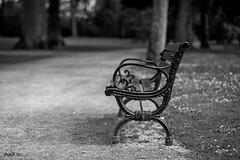 S'asseoir sur un banc (Fredibouille) Tags: alone sit simple parc banc