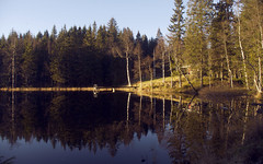 Lillomarka (capcapcap25) Tags: autumn trees light lake green nature water oslo norway landscape cabin outdoor nordmarka lillomarka