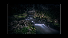 Little river (Illon Pictures) Tags: green forest river outside long exposure outdoor ombre filter nd exterieur