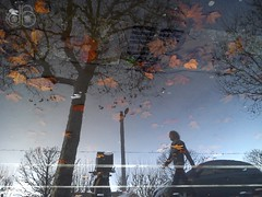Wet #04 (c-dr-c) Tags: wet water rain puddle eau upsidedown bordeaux pluie reflets reflects flaque mouill lenvers