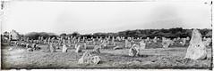 Cailloux bretons. (*Jost49*) Tags: bw france texture vintage bretagne nb panasonic morbihan carnac menhir alignments alignements vieilli lumixfz1000