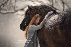 I'll Keep You Safe (Hestefotograf.com) Tags: winter horses horse snow love oslo norway caballo bokeh pony camouflage cavalos ponies forever pferde dappled cavalo pferd whitehorse equine equus paard horseandgirl equinephotography equinephotographer hestefotograf