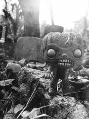 walker (amy saar) Tags: zombie walker funko thewalkingdead funkopop glennrhee woodberrywalker