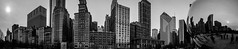 fazole (christopherdvoran,jr) Tags: park sky blackandwhite bw cloud sun white chicago black reflection building lines architecture buildings illinois gate panoramic millennium il cloudgate merge t3i selfie