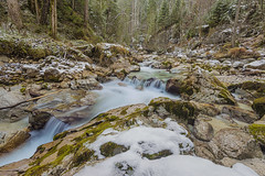Ramsau magic forest (merbert2012) Tags: winter snow nature water forest germany landscape bavaria nationalpark nikon outdoor creeks planetearth ramsau longexposurephotography nikond800