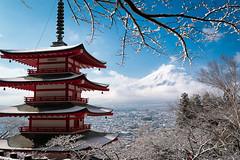 Chureito Pagoda in Winter (Yuga Kurita) Tags: snow nature japan landscape fuji mt mount fujisan snowscape fujiyama