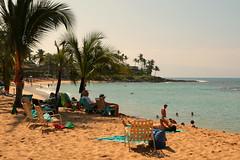 JAN 29 2016 (byronfairphotography) Tags: ocean beach hawaii bay maui palmtree napili