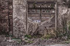 Durchgngig (gofr366) Tags: brick wall trash germany deutschland hessen ruin ruine mauer kassel steinmauer kulturfabrik nordhessen salzmann backsteinmauer kasselbettenhausen kulturfabriksalzmann