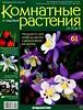 Комнатные и садовые растения от А до Я 61 15