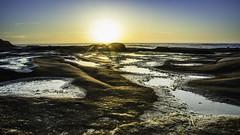 La Jolla Rocks (Danny Crowder) Tags: ocean sunset sea sun seascape beach water landscape coast la san diego jolla waterscape