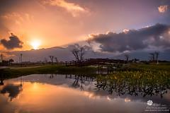 夕陽 (Wi 視覺) Tags: light sky sun landscapes taiwan 夕陽 花蓮 夕色 台開心馬場