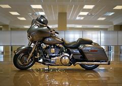Ole' Dog (CbearCore) Tags: bike sony harley motorcycle cruiser a7