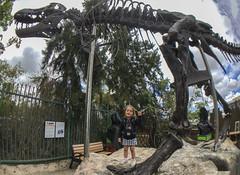 Climbed The Dino (evaxebra) Tags: