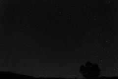 sky picture (JustinMullenPhotography) Tags: trees dark stars space astrophotography milkyway