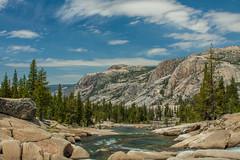 IMG_1301 (dangerismycat) Tags: california waterfall yosemite tuolumnemeadows tuolumneriver grandcanyonofthetuolumne glenaulintrail wildcatpoint