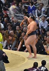 日馬富士 画像12