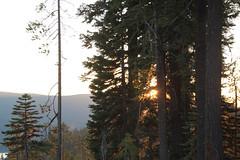 Diamond Lake, Oregon (nikname) Tags: trees mountains oregon sunsets cascades forests diamondlake stateparks cascademountainrange oregonstateparks usanationalparks stateforests highcascades usanationalforests diamondlakenationalpark